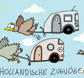 Holländische Zugvögel - Cartoon