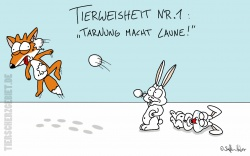 Cartoon Tarnung